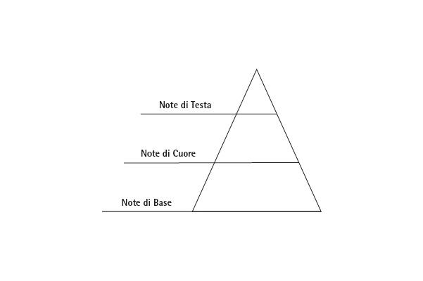piramide olfattiva - profumo